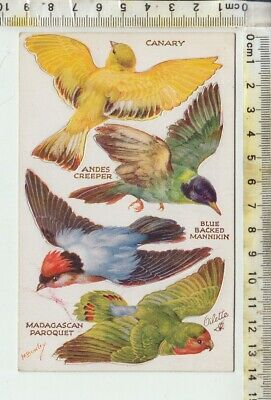 """TUCK'S """"OILETTE""""No. 3375 BIRDS ON THE WING Series II - Push Out Birds CANARY"""