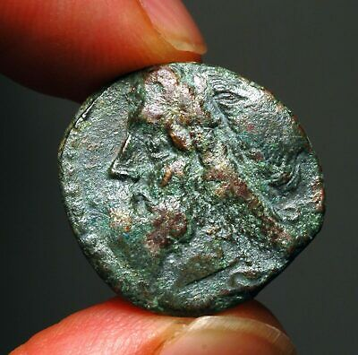 G34-31  SICILY, Syracuse. Hieron II 275-215 BC, shows Poseidon and trident