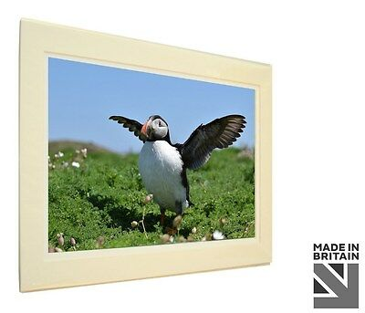 Art Print Image Picture Photo Photography - Puffin Sea Bird | Nature | Wildlife