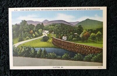 Georgia Clayton From Forest Hill Inn Ravens Wing & Pinnacle Mtn Vintage Postcard