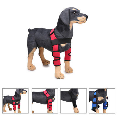 Cn _ 2X Chien Coude Protecteurs Chiot Chirurgie Plaie Protège Jambe Support