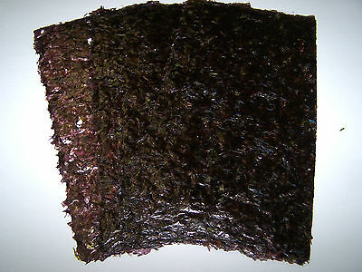 Dark Roasted Nori Seaweed Sheets - Marine Fish Food