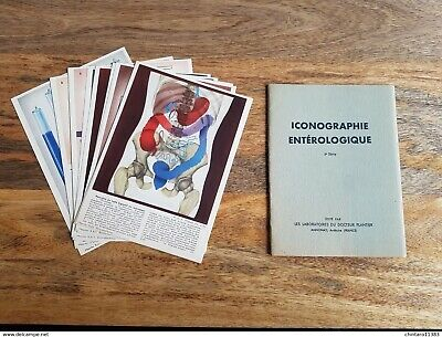Lot 4 carnet iconographie hépatique par les Labos Plantier-Pubs pharmaceutiques