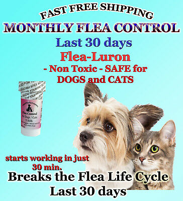 1 Year Supply MONTHLY Flea Control DOGS and CATS 2-30Lbs.165 Mg +2 Free Killer