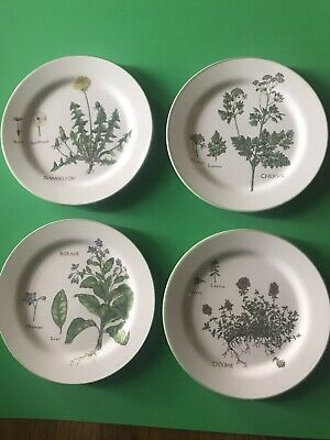 Williams Sonoma Culinary Herbs Portugal Salad /Luncheon Plates-Set Of 4