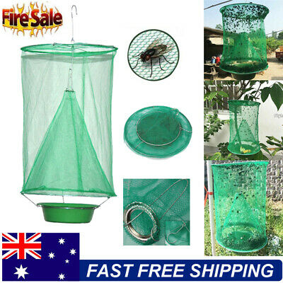 The Ranch Fly Trap The Most Effective Trap Fly Catcher Killer Flies