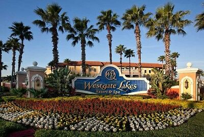Westgate Timeshare Studio Rental (Orlando or Gatlinburg)