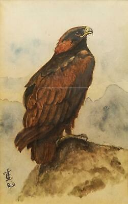 Manner George Edward Lodge Antique Monogrammed Watercolour Painting Golden Eagle