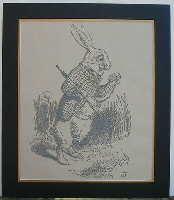 White Rabbit - Lewis Carroll Novel Alice's Adventures in Wonderland Old Litho