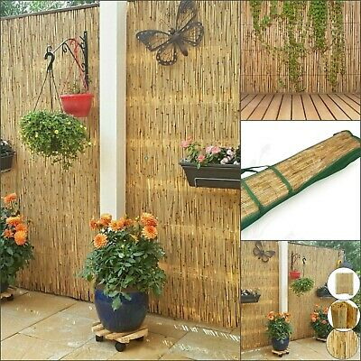 Natural Peeled Reed Fence Screening Garden Privacy Wind Break Wall Fencing 4m