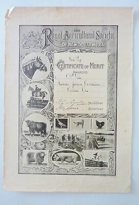 ORIG. 1924 ROYAL AGRICULTURAL SOCIETY(Easter Show)CERTIFICATE of MERIT Australia