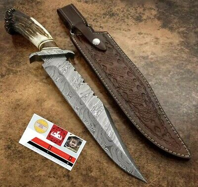 "14"" Damascus hunting knife forged Damascus Steel with stag horn"