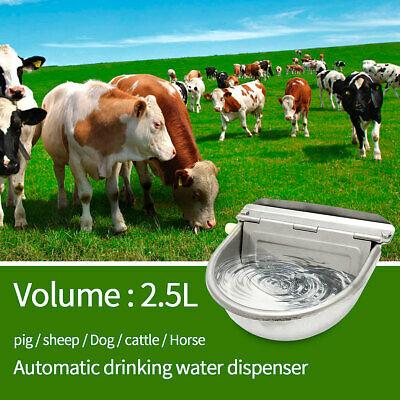 2.5L Automatic Water Drinking Bowl Stainless Steel Trough Horse Cow Dog Sheep UK
