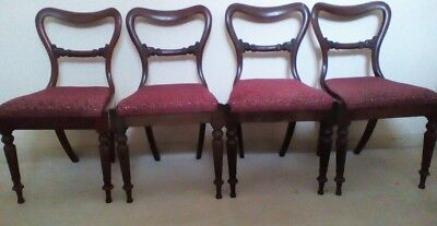 Good Antique Set of 4 William IV Rosewood Chairs Home Decor