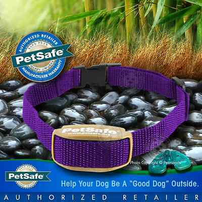 PetSafe Pawz Away Pet Barrier Receiver Outdoor Indoor PWF00-13664 Purple Collar