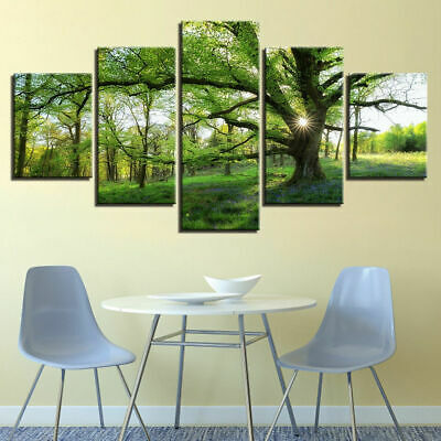 Green Forest Trees Nature Rainforest Sunshine Canvas Prints Painting Wall Art 5P