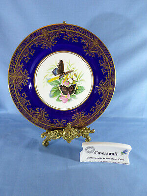Stunning Caverswall Cabinet Plate Signed Holmes Gray Butterflies Morning Cloak 1