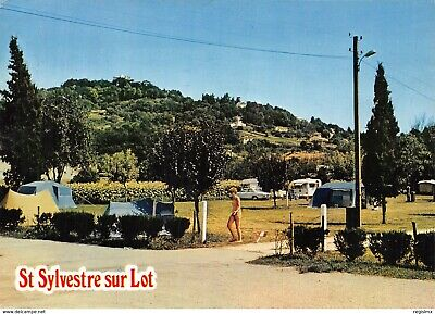 47-Saint Sylvestre Sur Lot-N°2194-C/0317