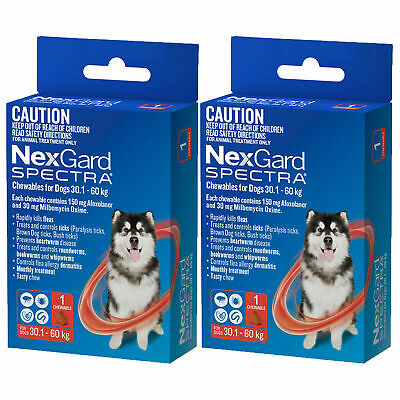 2 Single Chews Nexgard Spectra Red Tick Worm Flea Treatment for Dogs 30 - 60 kg