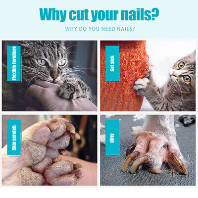 Professional Dog Cat Pet Grooming Toe Nail Claw Clippers Trimmer Scissor Cutter
