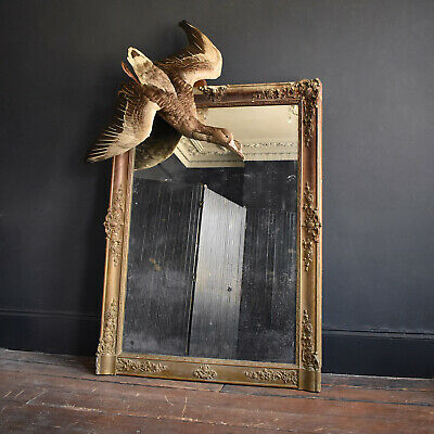 Huge 19th Century French Mirror - Large Antique Gilt Gesso Framed Overmantel
