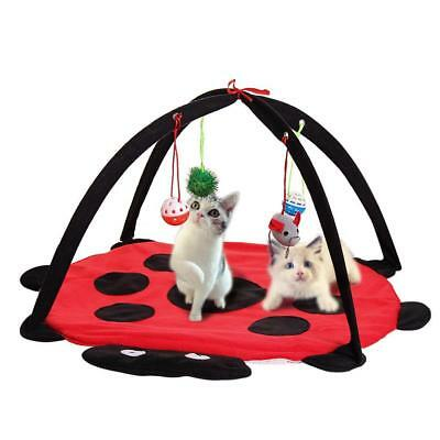 Red Cat Bed Pet Toy Tree Furniture House Post Scratcher Play Condo Kitten Tower