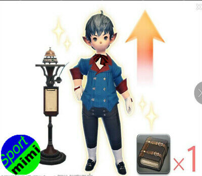 FINAL FANTASY XIV FF14 Level Boost Tales of Adventure: One Retainer's Journey II