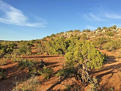 1.18 Acres Snowflake Arizona Ranch Of The Golden Horse Cash Sale Great Access!