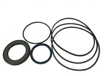 White Motor Seal Kit, 700-666300, To Suit Dt 740 Series, Hydraulic Motor
