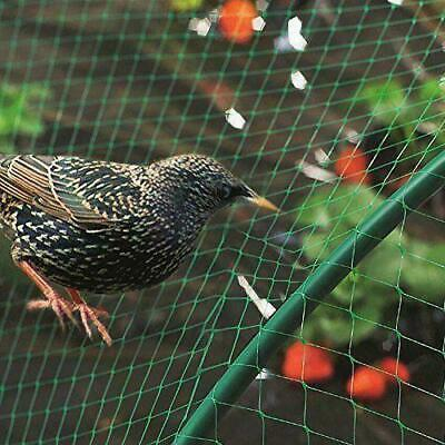 Vegetable Protection Net Plastic Mesh 4 x 10m Butterfly Anti Bird Strong Netting