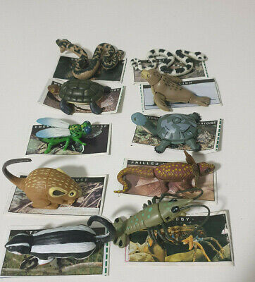 Yowies Series 1 Lot Of 10 Australian Animals With Papers Frill Neck Lizard