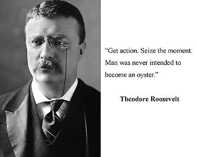 President Theodore Teddy Roosevelt Quote 8 x 10 Photo Picture #b1