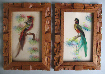 Two Framed Mexican Feathercraft Folk Art Painted Birds 1950s Vintage Lot