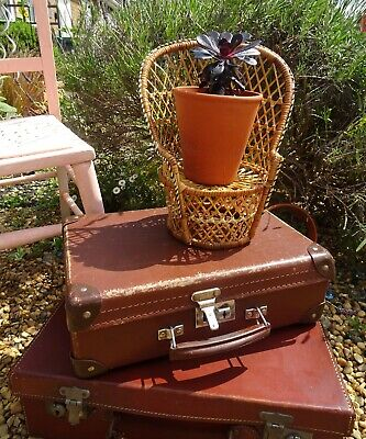 Vintage Small Wicker Cane Peacock Chair- Dolls Chair- Houseplant Display