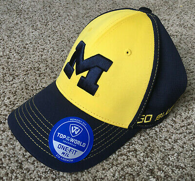 42ebbba33 3 UNIVERSITY OF Michigan, Wolverines Vintage Style College DECALS ...