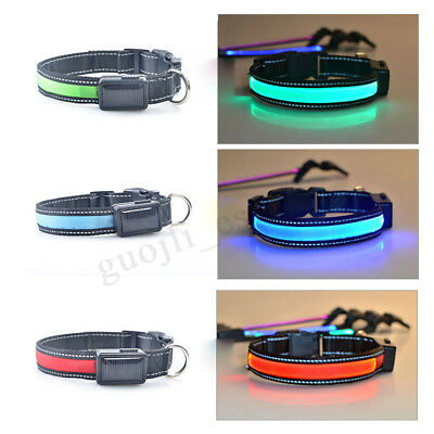 USB Rechargeable LED Dog Collar Nylon Glow Flashing Light Up Safety Pet