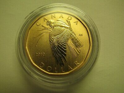 2010 Specimen $1 Birds of Canada #10-Northern Harrier Hawk loonie COIN ONLY from