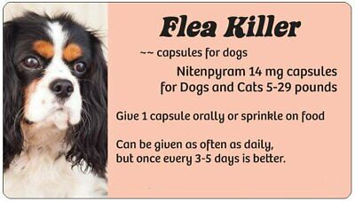 SUPER SALE! ~~ Flea Killer for Dogs or Cats 5-29 lbs. ~~ 12 Peach Daily Pills