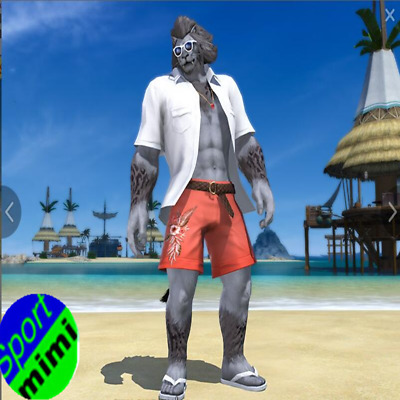 FINAL FANTASY XIV FFXIV Seasonal (Unisex) Endless Summer Attire FF14 Item Code