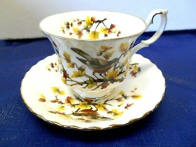 """Royal Albert Woodland Series """"Robin"""" Footed Cup/Saucer"""