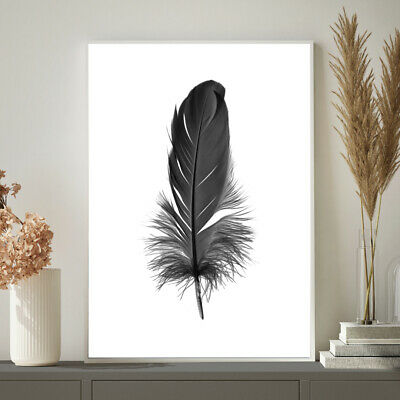 Bird Feather Black & White Photograph Bedroom Wall Art Print Poster A4 A3 A2 A1