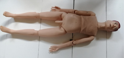 Patient Care Teaching Model Human Medical Manikin Male Education Display