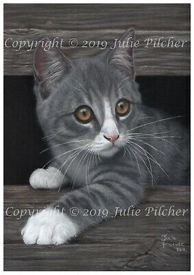 A4 Print taken from Original Pastel Painting of a Grey Kitten, Cat, Pet Not ACEO