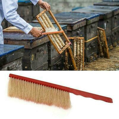 Bee Sweep Brush Horse-Hair Bee Flicking Horsetail Bee Beekeeping K4W5 Equip L0R8