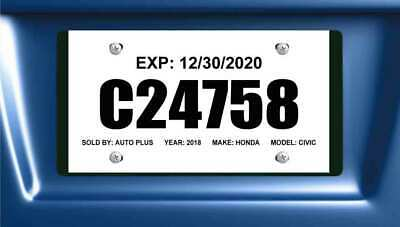 Printable Tear Resistant Temporary Tags - Dealer License Plates (100 Per Pack)