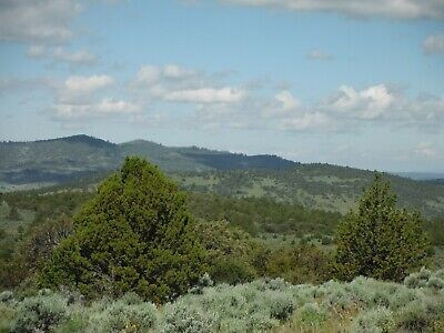 40 Acres Northern California Mountain View Property Legal Road Access