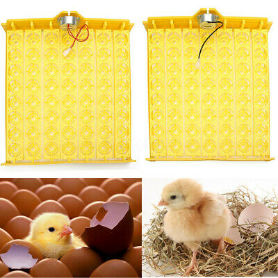 Automatic Egg Incubator 56 Eggs Turner Tray Chicken Quail Duck With 0V/220V