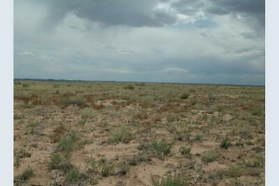 40 ACRES NORTHERN ARIZONA RANCH - 1mi S of PETRIFIED FOREST NATL PARK! - $120/mo