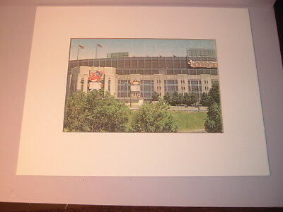 Cleveland Indians Mascot Chief Wahoo & Brownie at Municipal Stadium Matted Print
