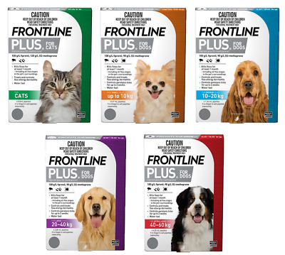 Frontline Plus Dogs and Cats All Sizes Flea Treatment for Cats & Dogs